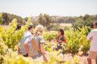 Excursión a Montserrat desde Barcelona con almuerzo y cata de vinos gourmet incluidos