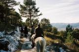 Paseos a caballo por el Parque Natural de Madrid