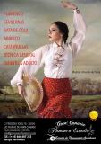 Clases de Iniciación al Flamenco 50% descuento